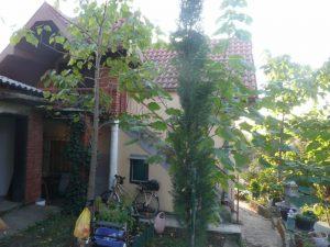 Kuca 110 m2 i 26 m2 pom zgrada, Kostolacki put, 35.000